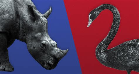 Paid Program: From Black Swans to Gray Rhinos: Confronting