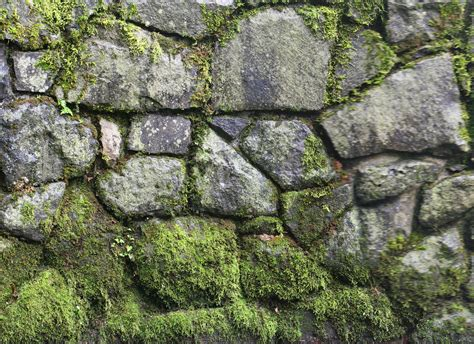 FREE 20+ Stone Wall Texture Designs in PSD | Vector EPS