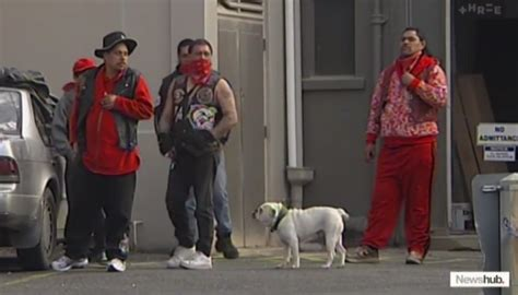 Electoral commission staff to visit Mongrel Mob